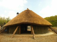 Castell henllys roundhouse